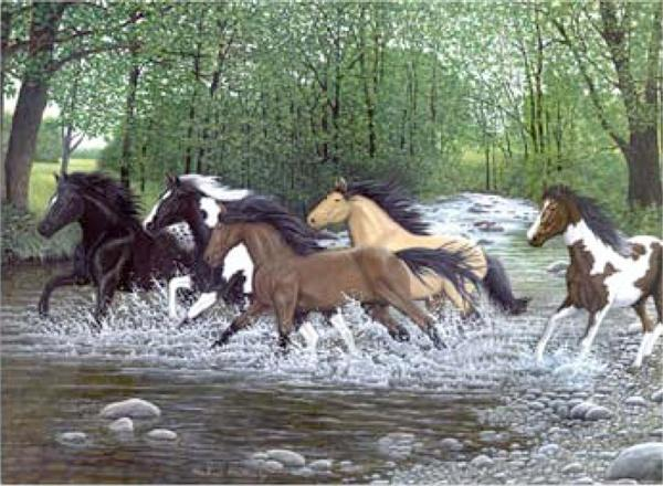 Kreatívny set na maľovanie - Bežiace kone (sada na maľovanie podľa čísel Royal & Langnickel)