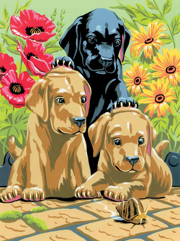 Kreatívny set na maľovanie A4 - šteniatka labradora