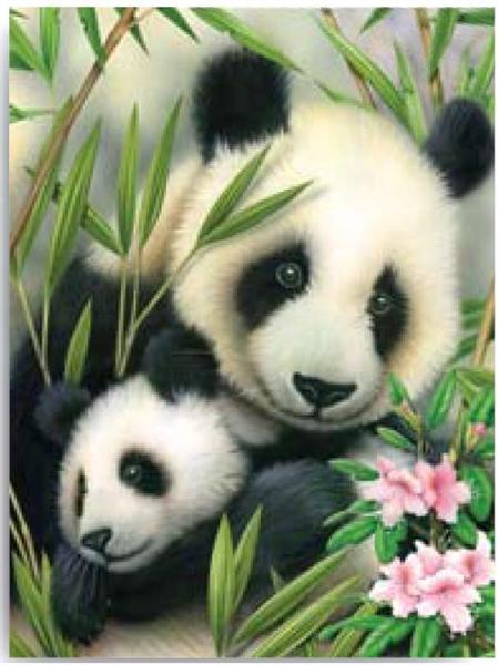 Kreatívny set na maľovanie - Panda s mláďatkom (sada na maľovanie podľa čísel Royal & Langnickel)